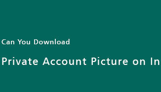 Download-Private-Account-Picture-on-Instagram